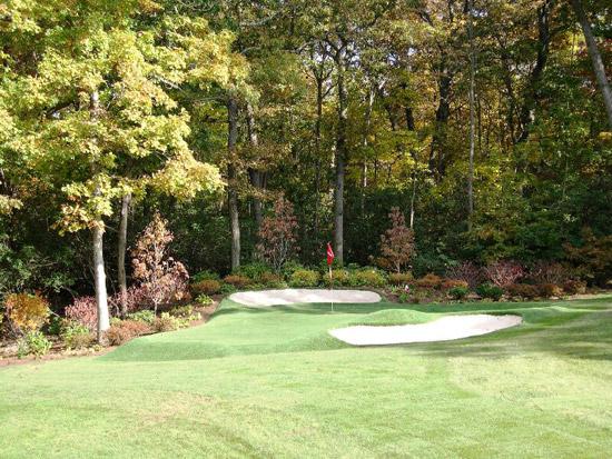 backyard-putting-green_1