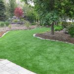 artificial lawn turf in washington dc